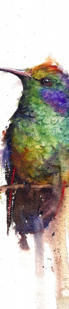 Dean Crouser - Hummingbird 1